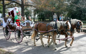 THERE WAS LITERALLY NO CHANCE FOR SNOW on the day of the 2015 DFS Woman's Club Christmas Parade, so Santa Claus had to make do with a grounded horse-drawn carriage instead of the usual airborne reindeer-pulled sleigh. (Photo by Reid Tucker)